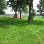 355 N Hickory Ln backyard