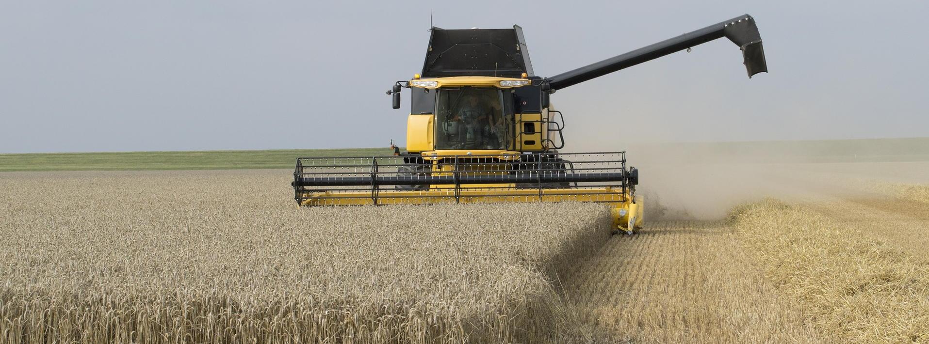 harvest-time-595447_1309