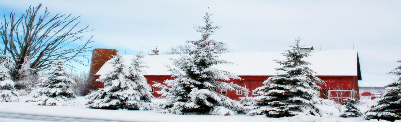 winter-barn-556697_1309